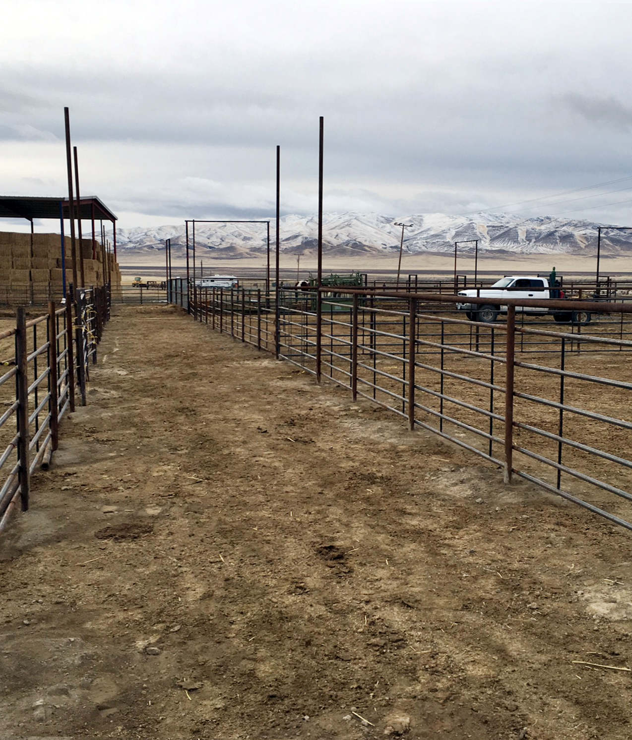 Willow Creek Ranch Feed Lot
